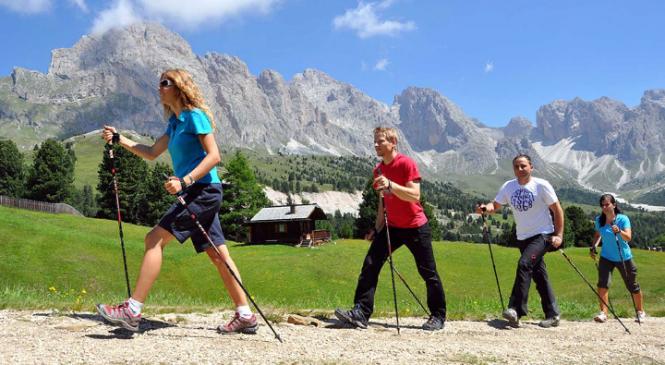 Палки для скандинавской ходьбы: как выбрать подходящие